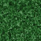 texture8