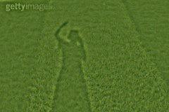 grass_mean_